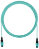 Pre-Terminated Fiber : Pre-Terminated Cable Assemblies : Interconnect Cable Assemblies : OM4 10 GbE 50/125μm Multimode -- FZTRP7N7NBNM010