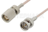 75 Ohm 1.6/5.6 Plug to 75 Ohm BNC Male Cable 24 Inch Length Using 75 Ohm RG179 Coax, RoHS -- PE36129LF-24 -Image