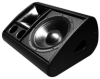 Two-way Active/Passive 12-Inch Low Profile Differential Dispersion Stage Monitor -- LE1200