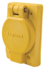 Locking Receptacle with Plate -- 67W76