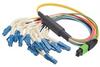 MPO Male to 12x Flex LC Fan-out, 12 Fiber Ribbon, 9/125 Singlemode, OFNR Jacket, Yellow, 1.0m -- MPM12S-FLC-1 - Image