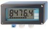 Display/Indicator - Field Display -- RIA 261 - Image