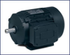 Definite Purpose AC Motor -- MM5350-5