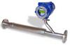534FTB Inline Mass Flow Meter -- 534 FTB