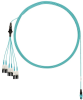 Harness Cable Assemblies -- FXTRL8NUJSNM025 -Image
