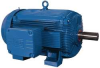 Rock Crusher Motor,300 HP,890 RPM,460 V -- 5DWE5