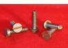 Molybdenum Fasteners - Image
