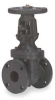 Gate Valve,5 In Flanged,Cast Iron -- 1JGL3