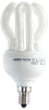Compact Fluorescent Lamps (CFL's) -- FT55DL