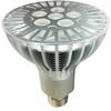 6x2W PAR-30 LED Light Bulb (15-Watt, Cree XPE LEDs) -- LW10-3026SS-CWW62H1LG - Image