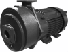 AF™ Single Stage Liquid Ring Vacuum Pumps -- Model A200-300 - Image