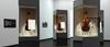 Transparent Displays -- Planar LookThru OLED Series