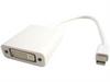 Mini DisplayPort to DVI Adapter -- 184031 - Image