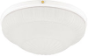 "10"" Low Profile Light with Frosted Rosette Glass -- 26136 - Image"