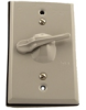 Switch Wallplates -- 1432