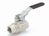 Metric Ball Valves Series BVGLOCK -- BVG4PLOCK BSPP Female/Female, Vented, Locking Handle