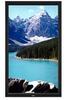 65-Inch PIPD Series Portrait LCD Public Display Monitor 1920X 1080 (1080p) Black with full AV Function -- LCD6520P-BK-AV