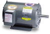 Definite Purpose AC Motor -- M1021T