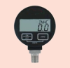 Digital Pressure Gage -- DPG 1204
