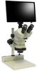 Microscope, Stereo Zoom (Trinocular) -- 243-1303-ND -Image