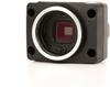 Firefly® MV CMOS image sensor -- FMVU-03MTM/C