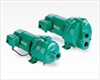 Deep and Shallow Well Jet Pumps -- Residential Products - Image