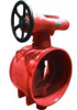 AGS Butterfly Valve - Series W709 - Image