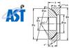 Rod Ends and Spherical Bearings -- GX100N - Image