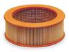 Air Filter,7.5-10 HP -- 88171913