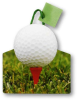 OUTLET 6 Small Size Golf Ball Die Cut Gift Bag Item# OUTLET15 -- OUTLET15