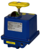 M Series Electric Actuator -- M Series