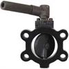 Dwyer Series SAE Butterfly Valve