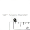 Sphere Magnets -- S125A