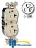 Leviton Back and Side Wired Illuminated Duplex Receptacle -- 8300-HL - Image