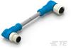 M8/M12 Cable Assemblies -- T4162224003-002 -Image