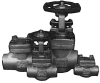 Forged Stainless Steel Gate Valve -- Model 1