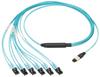Fiber Cable Assemblies : Breakout Harnesses -- FZTHP5NLSSNF021