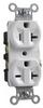 Combination Duplex Receptacle -- 5890-I -- View Larger Image