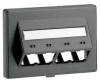Modular Furniture Multimedia Outlet Faceplate Black 4 Port -- 07498379970-1 - Image