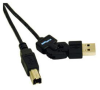 Cables To Go 6-Foot FlexUSB 2.0 A/B Cable -- 30513