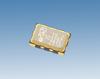 Oscillator -- NT5032SC