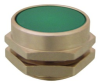 Extended Captivated Push Button -- PC-4F-OR