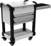 MultiTek Cart 2 Drawer(s) -- RV-GB37A2F102B -Image