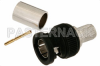 75 Ohm BNC Male Connector Crimp/Solder Attachment For 1694A, High Definition -- PE44632 -Image