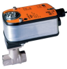 Characterized Control Valves -- B208+LF120-S US -- View Larger Image
