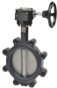 Butterfly Valve -- F6200L+ZD6N-S150 -- View Larger Image