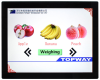 TFT Display TFT LCD Module CTP 1024x768 15 inch -- LMT150DNGFWD-NNC-3 - Image