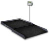 Bariatric Wheelchair Scale -- SB-1000
