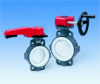 Type 55 Butterfly Valve -- 1717020 - Image