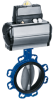 Centered Disc Butterfly Valve -- ISORIA